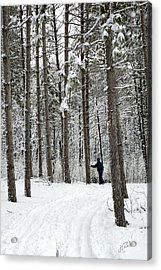 Acrylic Print featuring the photograph Winter Ski by Jessie Parker
