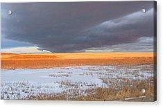 Winter Sky Alberta  Acrylic Print by Susan Copley