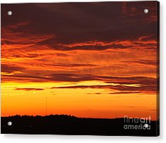 Winter Sky Acrylic Print by Paul Anderson