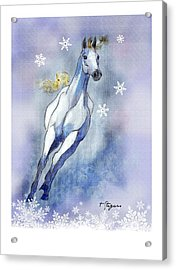 Winter Skye Acrylic Print