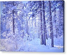 Winter Solace Acrylic Print by Tara Turner