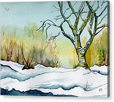 Winter Solitude Acrylic Print by Brenda Owen