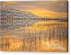 Winter Solstice 5 Acrylic Print