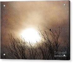 Winter Solstice Acrylic Print by Roselynne Broussard