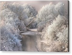 Winter Song Acrylic Print by Sebestyen Bela