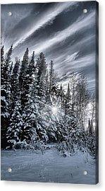 Winter Star Acrylic Print