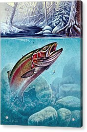 Winter Steelhead Acrylic Print by Jon Q Wright
