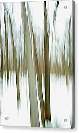 Acrylic Print featuring the photograph Winter by Steven Huszar