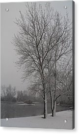 Winter Storm Acrylic Print by Alicia Knust