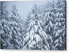 Acrylic Print featuring the photograph Winter Storm by Dennis Bucklin