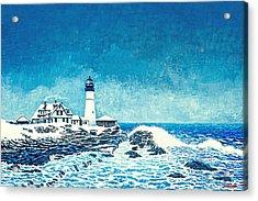 Winter Storm Watch Acrylic Print by David Linton