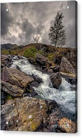 Winter Stream Acrylic Print by Adrian Evans