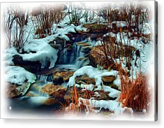 Winter Stream Acrylic Print by Dennis Lundell