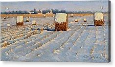 Winter Stubble Bales Acrylic Print by Bruce Morrison