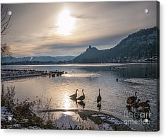 Winter Sugarloaf With Geese Acrylic Print