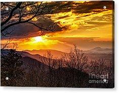 Winter Sun Acrylic Print by Mark East