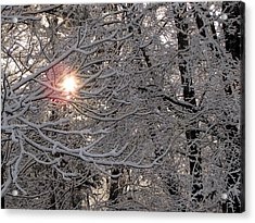 Winter Sunrise Acrylic Print by Greg Simmons