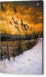 Winter Sunrise Through The Reeds - Artistic Acrylic Print