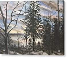 Winter Sunset Acrylic Print by Bev  Neely