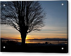 Acrylic Print featuring the photograph Winter Sunset by Erin Kohlenberg