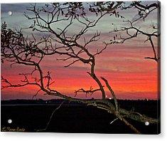 Winter Sunset Acrylic Print by Lisa Merman Bender