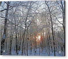 Winter Sunset Acrylic Print by Pema Hou