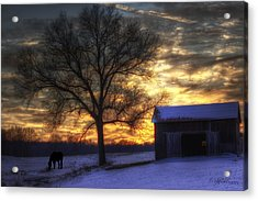 Winter Sunset Acrylic Print by Skip Tribby