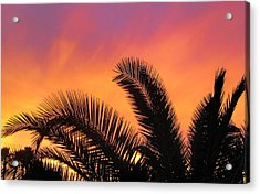 Winter Sunset Acrylic Print by Tammy Espino