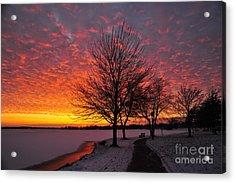 Winter Sunset Acrylic Print by Terri Gostola