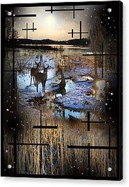 Winter Swamp Evening Acrylic Print by Andrew Sliwinski