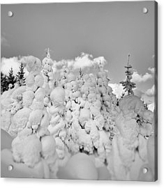 Acrylic Print featuring the photograph Winter Time by Frodi Brinks