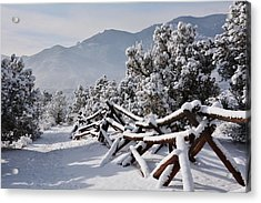 Winter Trail Beckons Acrylic Print by Diane Alexander