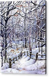 Winter Trail Acrylic Print by Beth Kantor