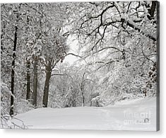 Winter Trail Acrylic Print