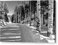 Winter Tranquility Acrylic Print