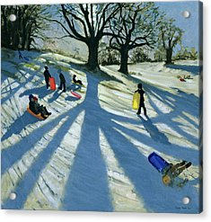 Winter Tree Acrylic Print by Andrew Macara