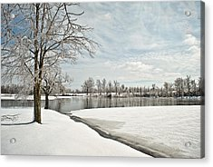 Winter Tree At The Park 2 Acrylic Print by Greg Jackson