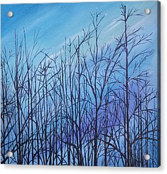 Winter Trees Against A Blue Sky Acrylic Print