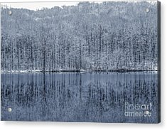 Winter Trees And Lake In Blue Acrylic Print