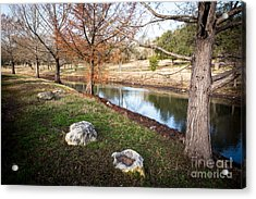 Acrylic Print featuring the photograph Winter Trees by John Wadleigh