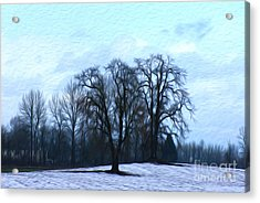 Winter Trees Acrylic Print by Nur Roy