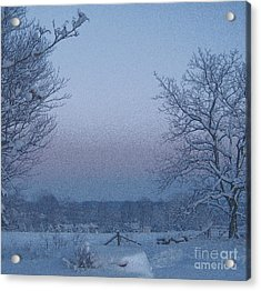 Winter Trees On West Michigan Farm At Sunrise Acrylic Print