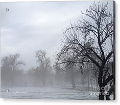 Acrylic Print featuring the photograph Winter Trees With Mist by Jeannie Rhode