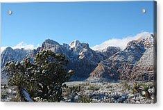 Winter Valley Acrylic Print