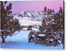 Winter Wagon Acrylic Print by Darren  White