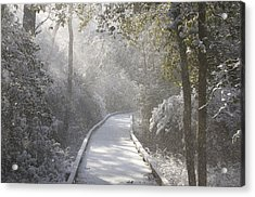 Winter Walk Acrylic Print by Greg Vizzi