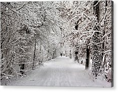 Acrylic Print featuring the photograph Winter Walk In Fairytale  by Annie Snel