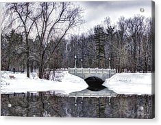 Winter Walk Acrylic Print by Skip Tribby