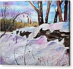 Winter Wall  Acrylic Print by Scott Nelson