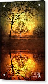 Winter Warmth Acrylic Print